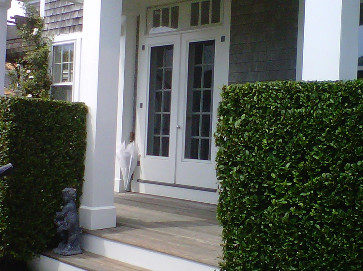 I like this look for the front entrance , mahogany floors...