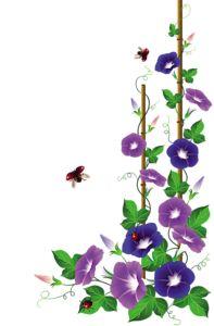 63 best Floral corner borders images on Pinterest