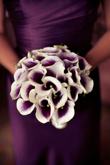 Purple: Bridesmaid Dresses, Wedding Bouquets, Bride Bouquets, Callalili, Calla Lilly, The Dresses, Bridesmaid Bouquets, Purple Calla Lilies, Purple Bouquets