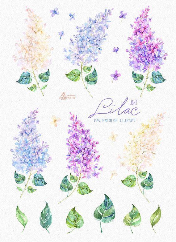 Lila Licht. Aquarell Clipart Karte florale von OctopusArtis auf Etsy