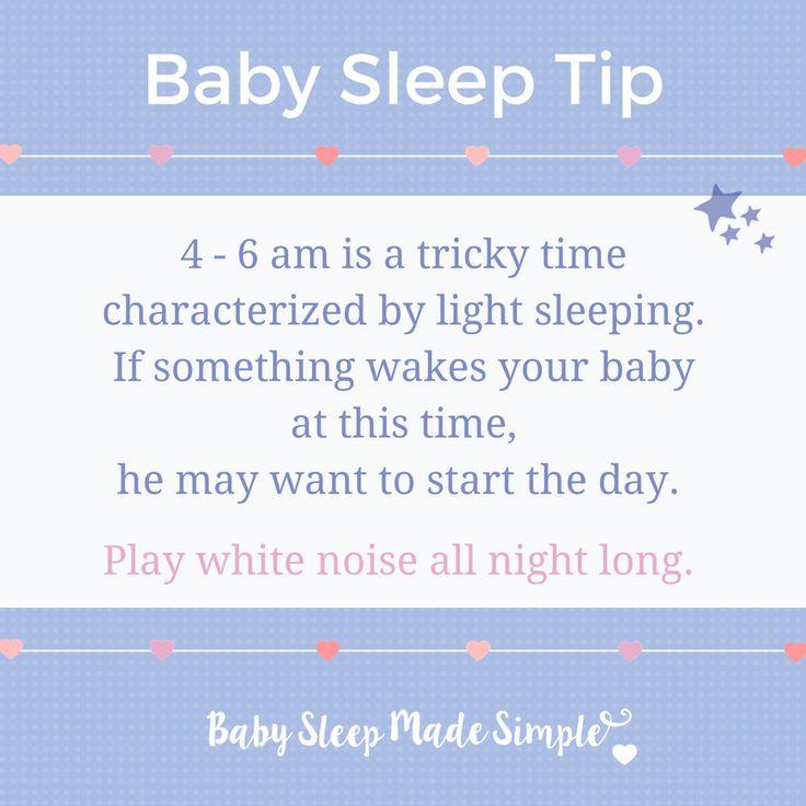 how to teach a dog to sleep through the night