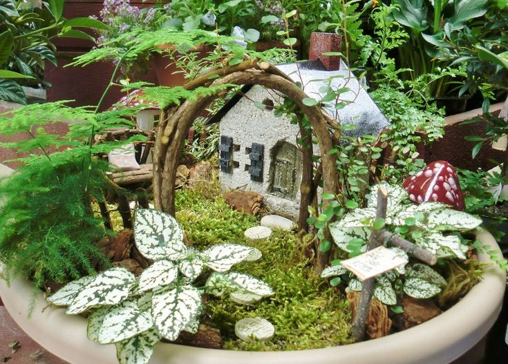 Fairy Gardens Take Us Into A Small Magical World Outside. A Diminuitive  Garden Scene Lures