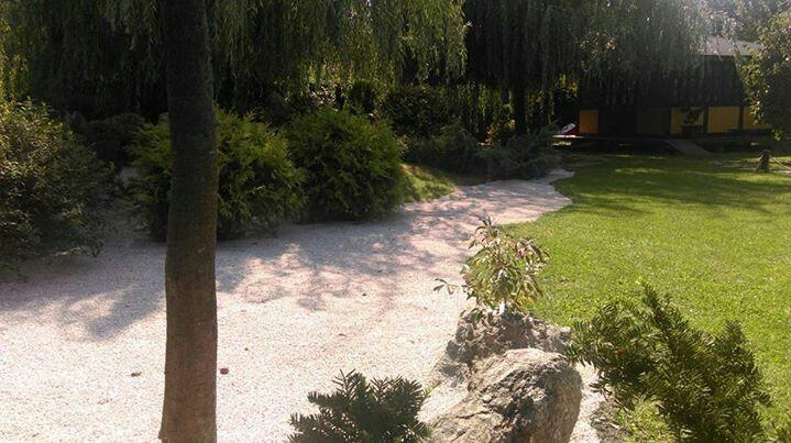 Small japanese backyard garden