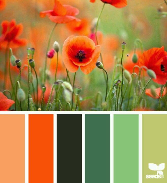 Kathy davis poppy orange and greens