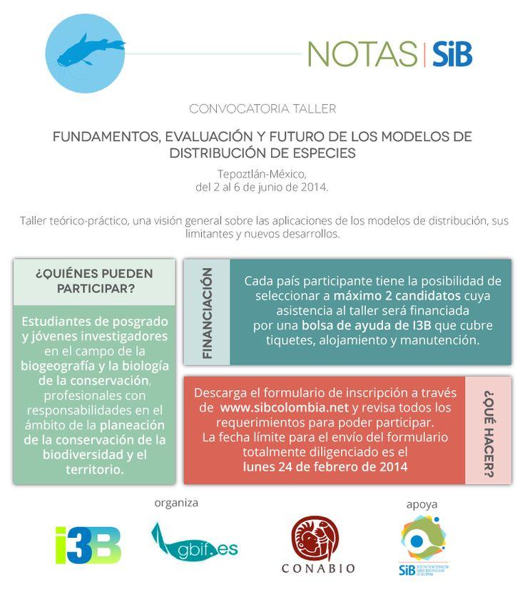 Convocatoria abierta para taller en México