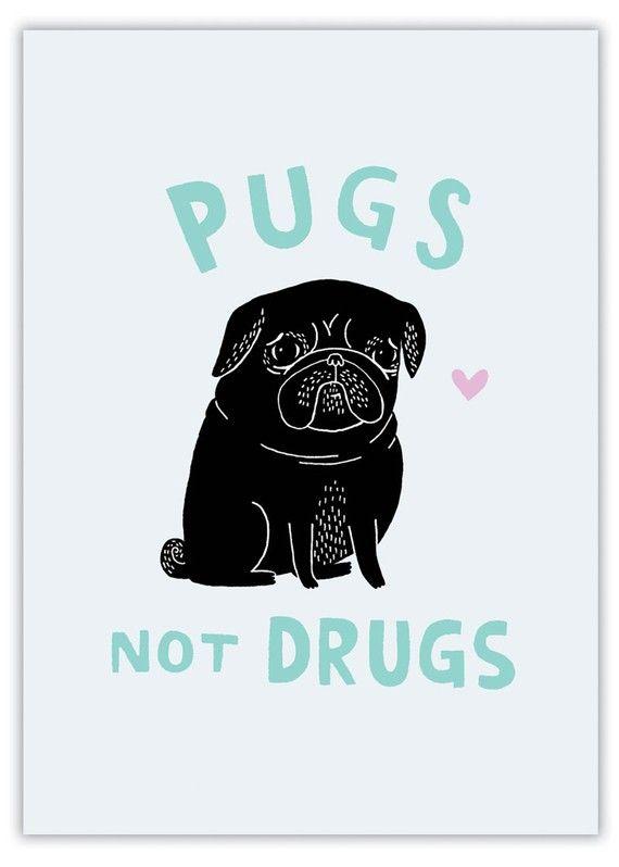 pugs not drugs (black pug) by gemma correll