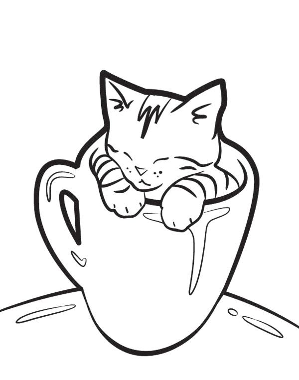 very cute kitty cat sleeping in a cup coloring page