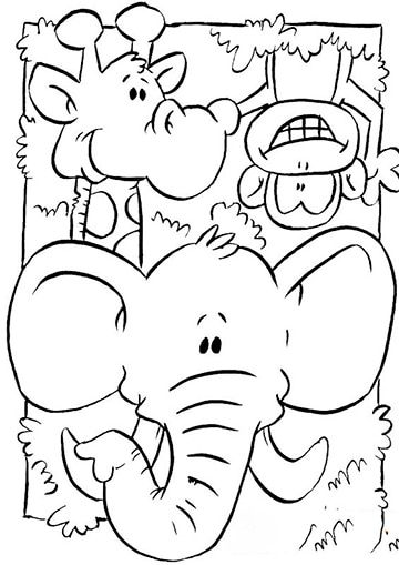 1230 best Animalitos images on Pinterest | Coloring pages, Coloring ...