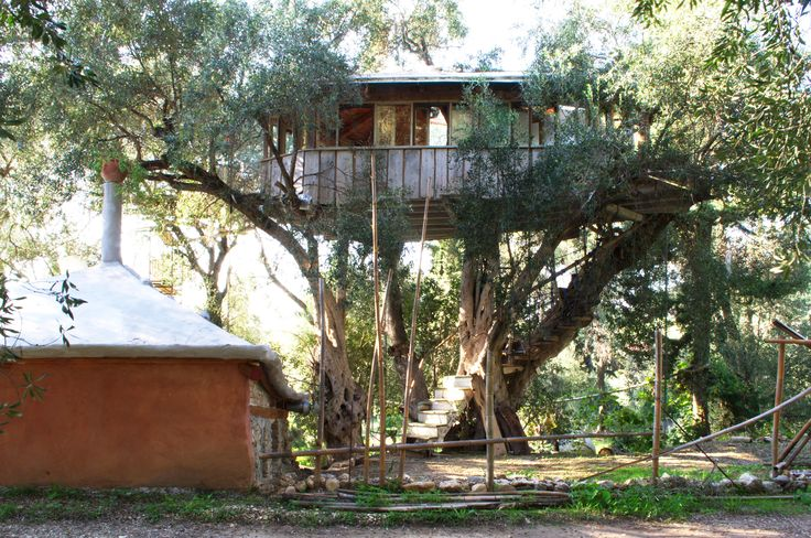 Olive tree house  https://margaritisartworks.wixsite.com/margaritisolivewood  https://www.facebook.com/pg/margaritis.olivewoodart