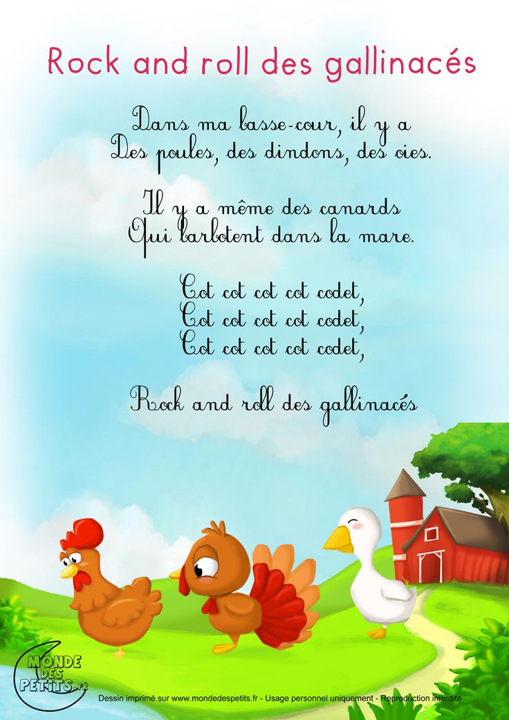 Paroles_Le Rock and roll des gallinacés