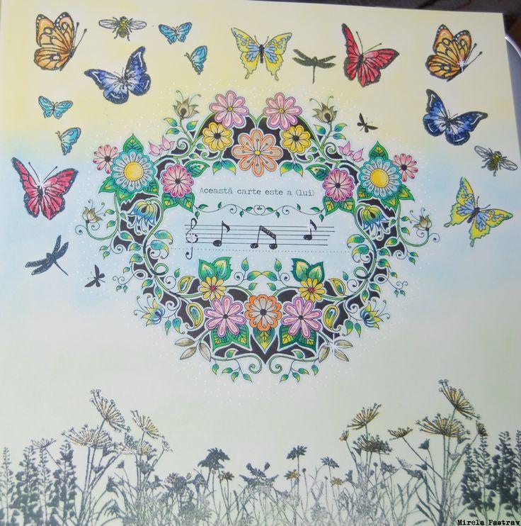 Johanna Basford's Secret Garden coloured by me.