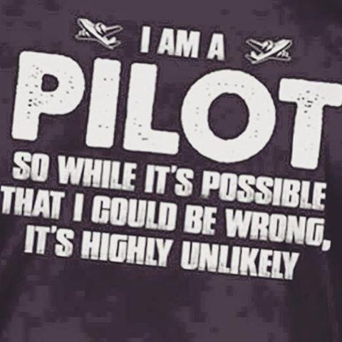 One for my PILFs! #confessionsofatrolleydolly #pilotlife #flightdeckfloozie