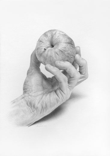 PENCIL DRAWING - javier arizabalo -