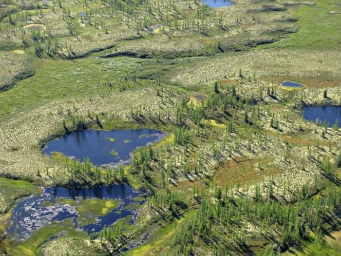 Partez cet été pour le Nunavik, vaste territoire arctique où vivent les Inuits depuis des millénaires et que les mots ne peuvent décrire véritablement : le silence sans fin de la toundra, la course effrénée des troupeaux de caribous, le ballet des aurores boréales, le défilé des banquises…http://www.voyageatheme.com/cap_sur_le_nunavik_a_la_recherche_de_l_ours_blanc.html