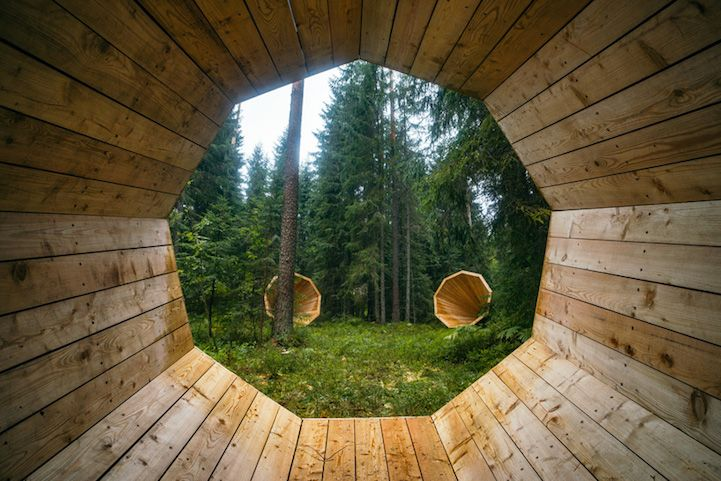 Gigantic Wooden Megaphones Amplify the Quiet Sounds of a Natural Forest