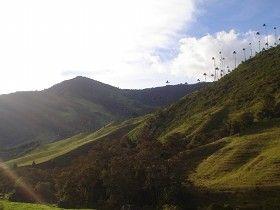 Valle del Cocora Salento