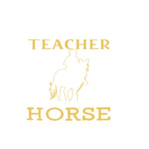 A Teacher Rides a Horse Tshirt and sweater ,Make someone happy with the gift of a lifetime,this includes back to school,thanksgiving,birthdays,graduation,Christmas,Halloween costumes,first day,last day,and any special celebrations. For womens,youth a