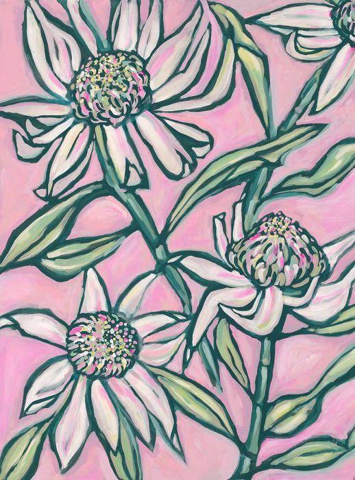 Pink Waratah Painting