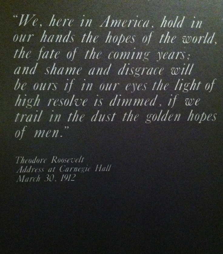 Women Arena Quotes: 17 Best Images About Theodore Roosevelt Quotes On