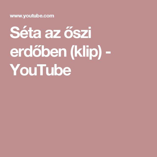 Séta az őszi erdőben (klip) - YouTube