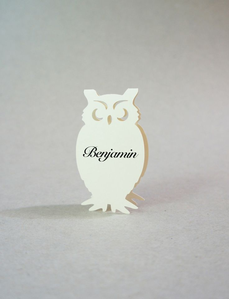 Owl  Place Cards  Wedding Place Cards  Owl by JonNiPaperGoods, $100.00