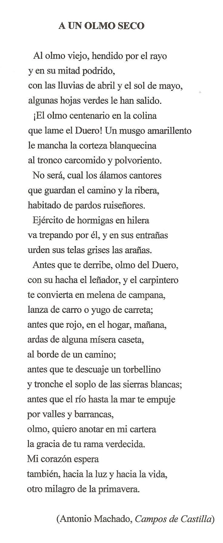 ''A un olmo seco'' es un poema que pertenece al libro ''Campos de Castilla'' que fue publicado en 1912.  Y hemos elegido éste poema porque, nos ha gustado como ha descrito un paisaje (que es muy propio de Machado en ésta etapa) y, la parte que más nos ha llamado la atención es cuando el autor, describe el olmo al detalle al principio del poema.
