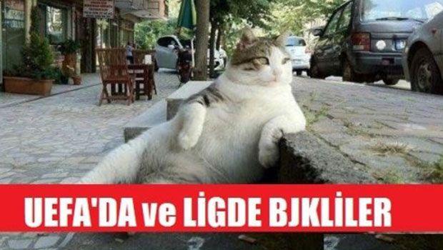 Beşiktaş İle İlgili En Komik Casp'lar :))