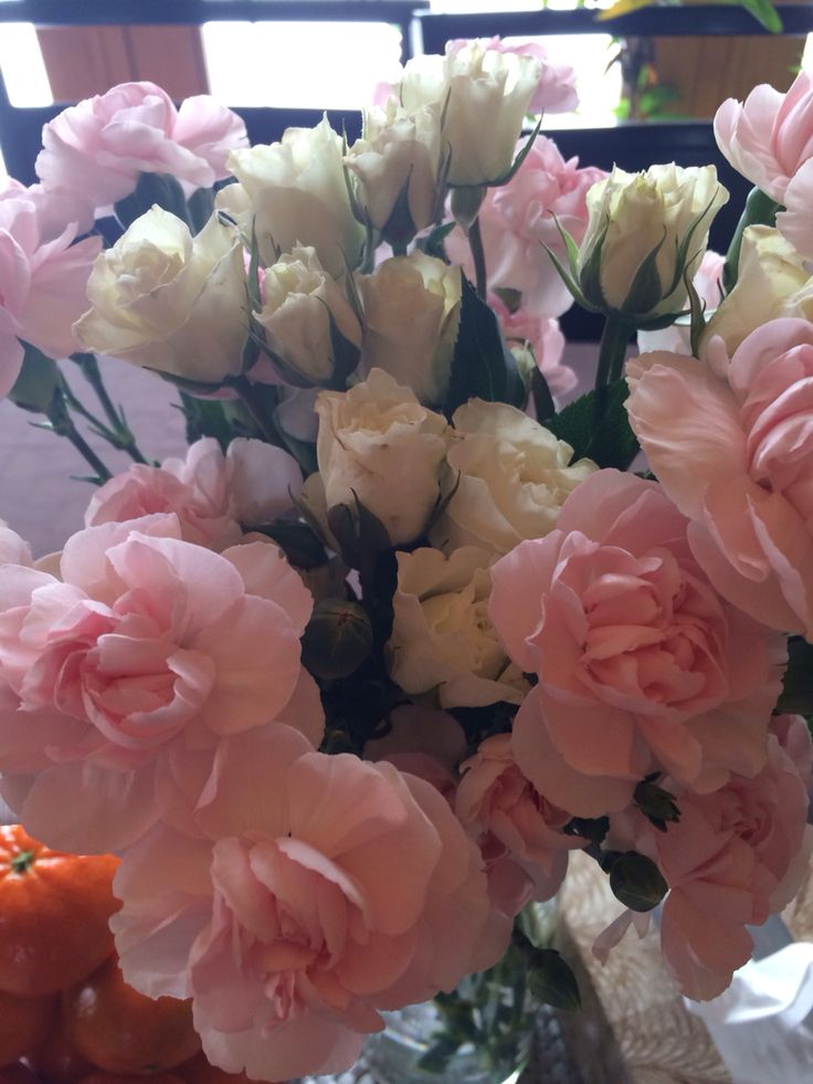 Easter color!! Love this pink carnation and white rose!!! Fresh up busy day!!!