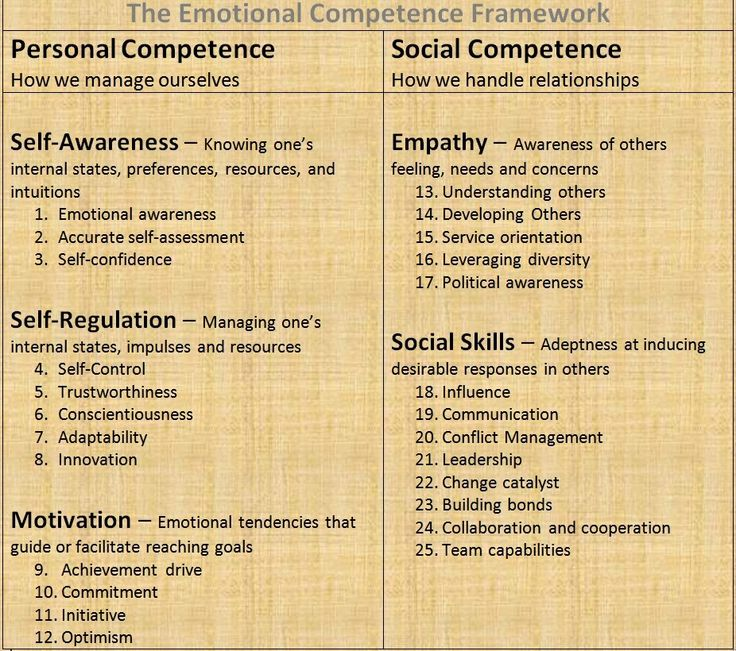 Emotional Competence Framework Competency Emotional