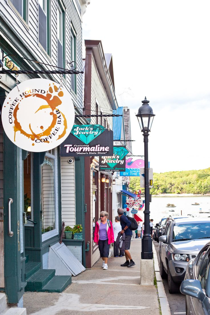 Curated Travel: 10 Must Do's In Bar Harbor Maine: Wild Blueberry Barren Tour