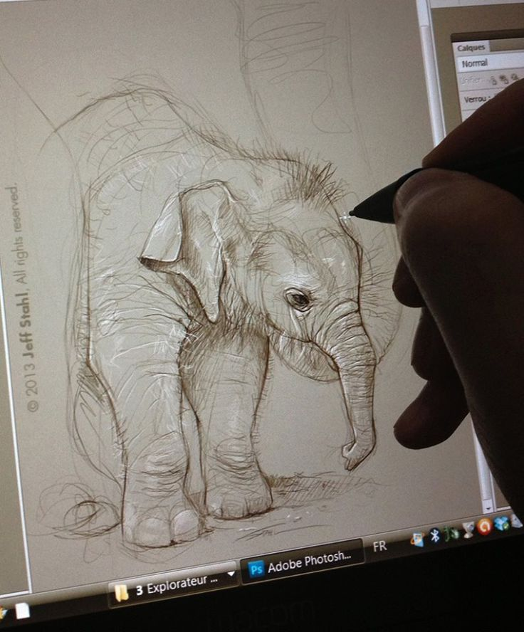 Sketching a baby elephant, because I absolutely LOVE them. But who doesn't, right ?  Animals are so fun to draw, I should do this more often.  (Photoshop CS5, Wacom Cintiq 12wx tablet)