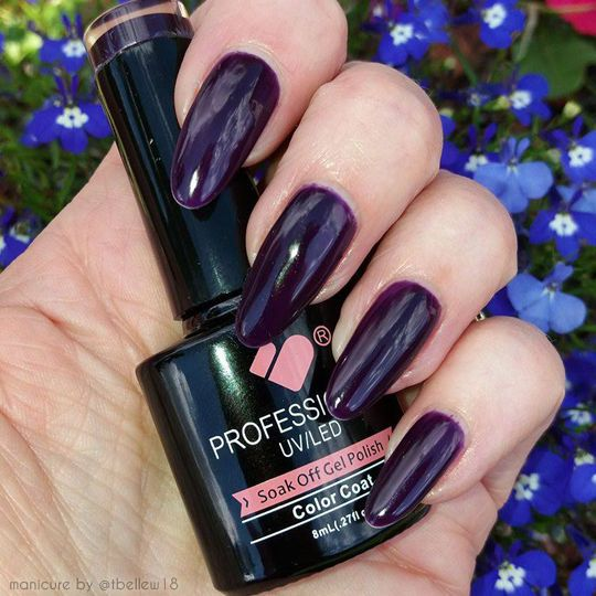 *195* VB™ Line Purple Plum Shiny Colour UV/LED Soak Off Nail Gel Polish