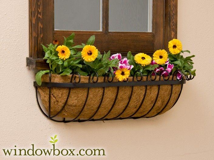 Scroll Window Basket w/ Coco Liner
