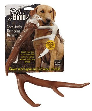 Shed Hunting Antler Dummy. Train your dog to find shed antlers with this lifelike training tool.