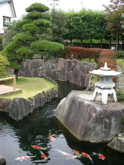 From: http://www.koiphen.com/forums/showthread.php?52909-Daily-Dose-of-Koi-from-Japan/page4)