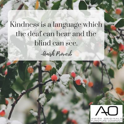"""Kindness is a language which the deaf can hear and the blind can see.""  ~Amish Proverb  #amishproverb #realsimple #kindness #loveyourneighbor"