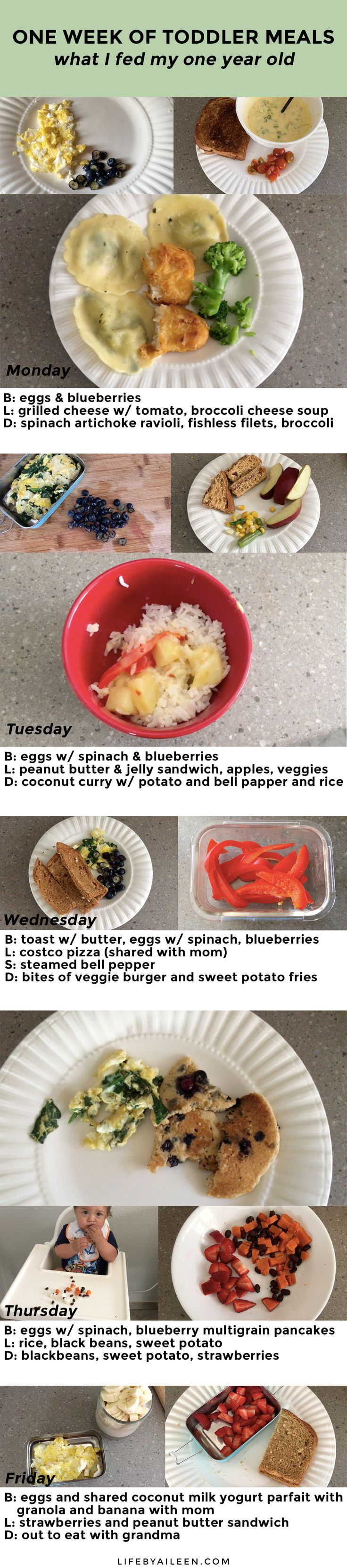 One Week of Toddler Meals - What I fed my 1 year old over the course of a week! Easy, healthy, vegetarian meals.