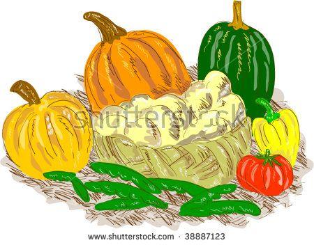 Basket Harvest fruits and vegetables  #vegetables #drawing #illustration