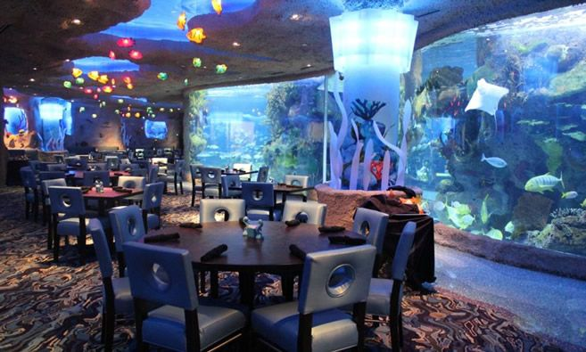 Great for B! Aquarium Restaurant - Nashville, TN