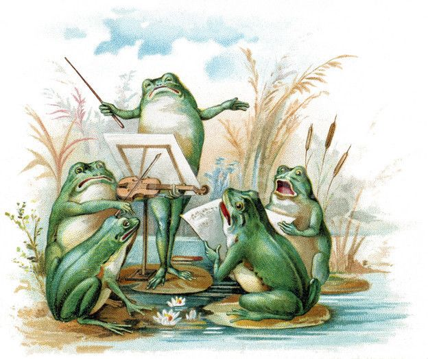 Musical Frogs.