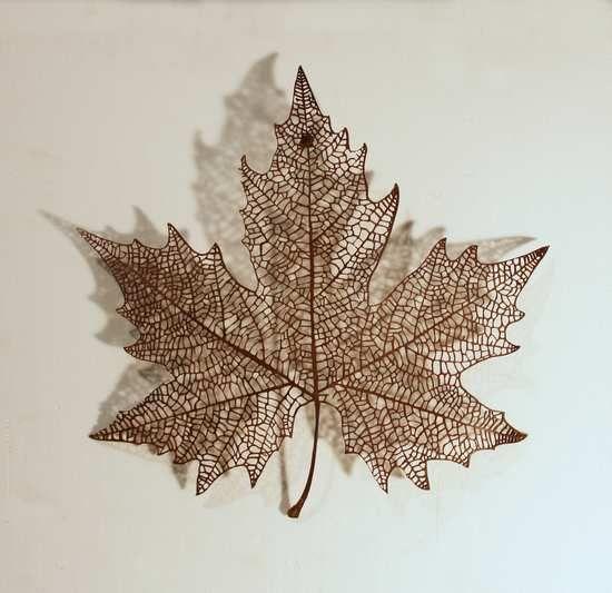 Escultura de Krum Stanoev disponible en la galería online de FLECHA, precio 800€. Mas info:  http://www.flecha.es/Comprar-obras-de-Krum-Stanoev/Escultura-Canadá/612/