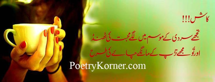 awesome 2 Line Urdu Poetry Kaash