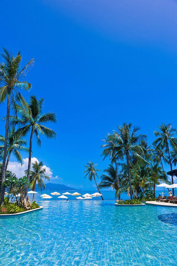 Infinity pool, Melati Beach Resort and Spa, Koh Samui (island), Gulf of Thailand, Thailand #PalmTree