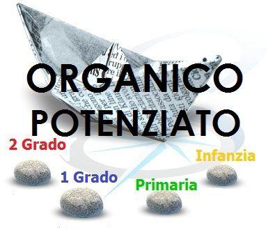 Scheda di progettazione delle attività dei docenti dell'organico potenziato