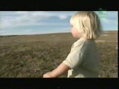 Steve Irwin's Great Escape : USA (Part 1)