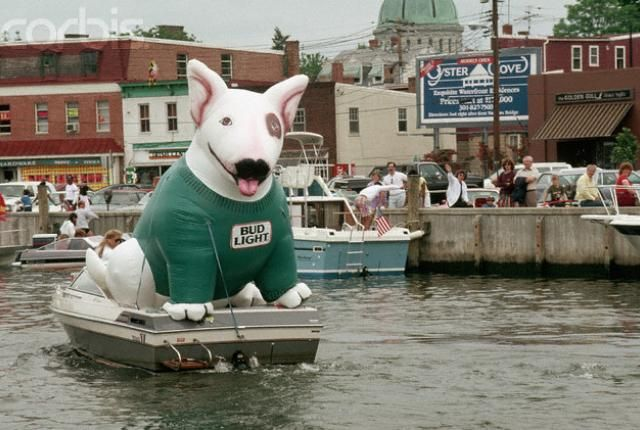 The Life and Death of Spuds MacKenzie, The Original Party Animal | Mental Floss