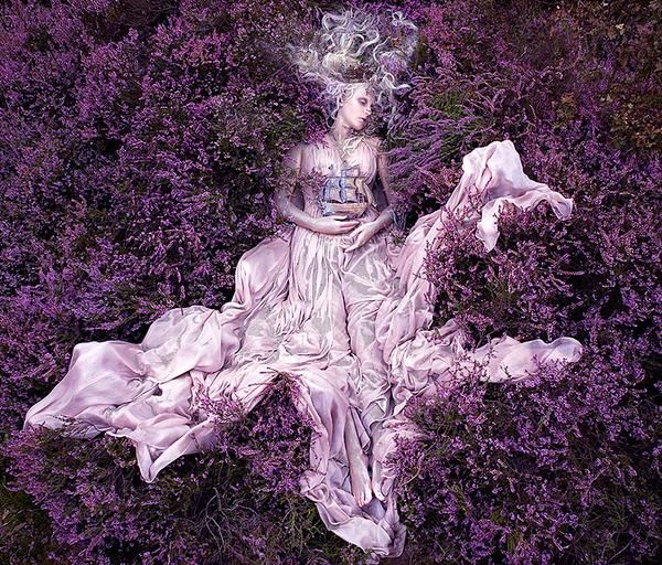 The Languid Ladies of Lavender. (the ladies were photographed by Kristy Mitchell. The other photos came from various blogs.)  I generally post stuff on faerie folke, medieval/renaissance history, magic, mythology, fantasy, and imaginary realms/people. If such images appeal to you, then please do check out my blog: pixiedustparcels.    I love lavender, and this photoset I found to be fascinating.