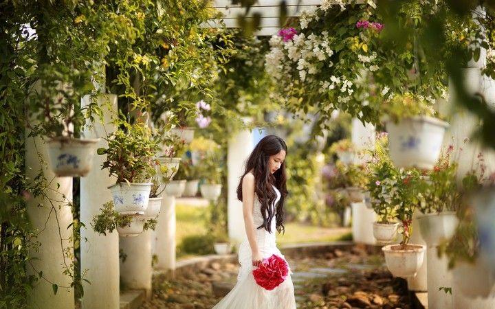Beautiful Asian Girl And Rose