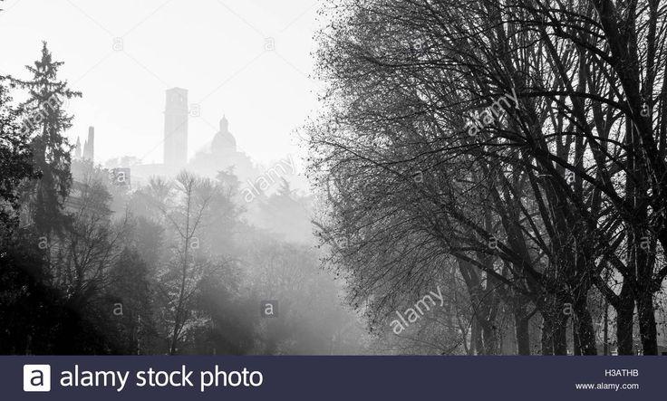 #MonteBerico in #Vicenza through the fog. pic @SimonPadovani