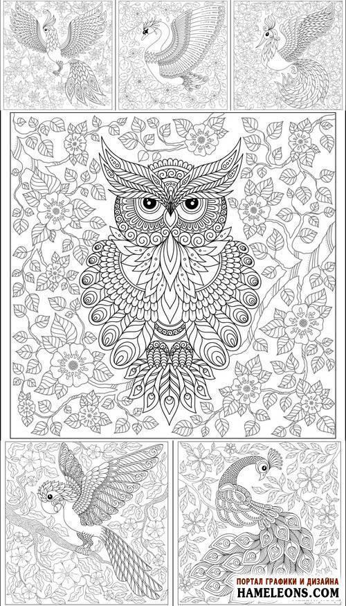 Черно-белые векторные иллюстрации с экзотическими птицами: павлин, сова, лебедь, попугай | Exotic Bird - Hand Drawing